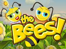 Гарантия крупного выигрыша – симулятор The Bees